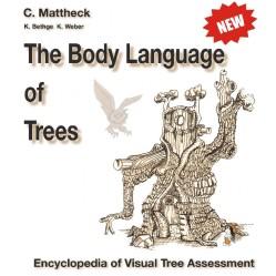 Body Language of trees NEW-1100x1100